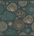 seamless pattern with corals vector image vector image