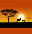 silhouette of deer at savanah vector image vector image