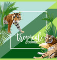 tropical flowers and tiger summer banner vector image vector image