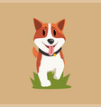 adorable red-haired welsh corgi walking by green vector image vector image