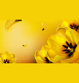 background with realistic yellow tulips vector image