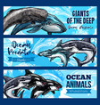 big giant animals of deep ocaen banners set vector image vector image