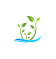 ecology leaf and wave logo vector image vector image