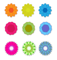 Flower on white background vector image vector image