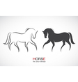 image of an horse design vector image