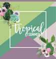 tropical flowers and cactus summer graphic vector image vector image