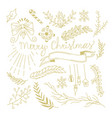 winter botanical festive hand drawn concept vector image vector image