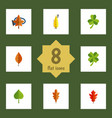 flat icon leaves set of hickory foliage linden vector image vector image