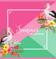 hello summer design with tropical plants and birds vector image vector image