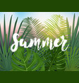 summer tropical design for banner or flyer with vector image vector image