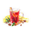 watercolor mulled wine christmas isolated vector image