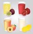 Fresh Fruits Juice in Glasses Set vector image