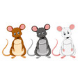 a set of differnt color rat vector image