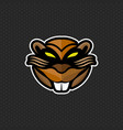 beaver logo design template beaver head icon vector image