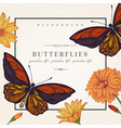 card with butterflies and flowers vector image vector image