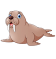 Cartoon cute walrus vector image vector image