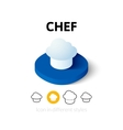 Chef icon in different style vector image vector image