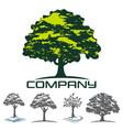 deciduous tree logo vector image