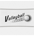Volleyball badges logos and labels for any use vector image vector image