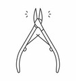cuticle nipper icon vector image