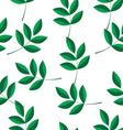 a pattern of green branches vector image vector image