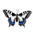 butterfly machaon on white background with shadow vector image vector image