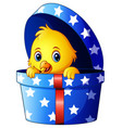 cute little baby chicken inside a gift box vector image vector image