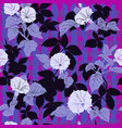 flowers of dope on the purple black pattern vector image