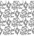 graphic pattern roses vector image