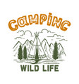 camping wild life vintage design with mountains vector image