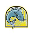 Catfish Jumping Sunburst Cartoon vector image vector image