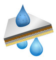 filtration of water vector image vector image