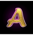 golden and pink letter a vector image vector image
