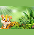 nature scene with tiger cartoon vector image