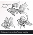 set filigree drawn goldfish in vintage style vector image
