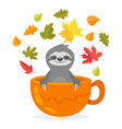 sloth character sitting in cup vector image vector image