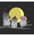 Three owl friends on the tree in the night forest vector image vector image