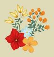 flowers ornament floral decoraiton vector image