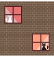 a cats in house windows vector image vector image