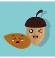 cartoon seed hazelnut and almond design isolated vector image
