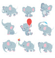 cute cartoon baby elephants animals african vector image vector image