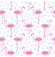 flamingo seamless pattern and leopard background vector image