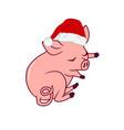 sleeping piglet wearing a santas hat new year vector image vector image