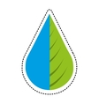 water drop and leaf plant vector image