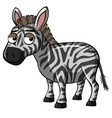 zebra with sad smile vector image