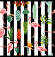 flamingo leaves flowers seamless striped vector image vector image