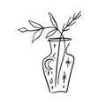 line art plant in pot contour drawing vector image