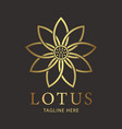 lotus luxury flower logo template vector image