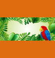 parrot in jungle template vector image