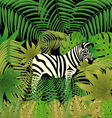 Picture zebra in the jungle vector image vector image